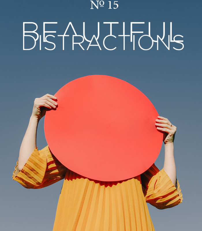 Beautiful Distractions No. 15
